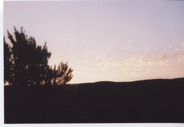 Black Sunset