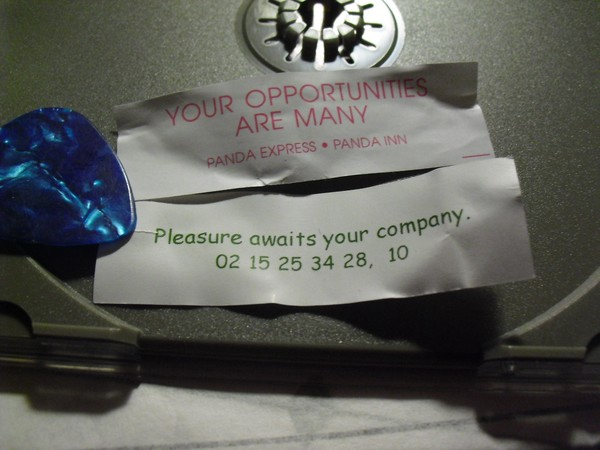 Pleasure Awaits Your Company