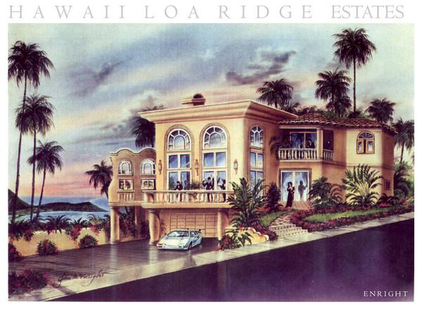 Hawaii Loa Ridge Estate Home 2
