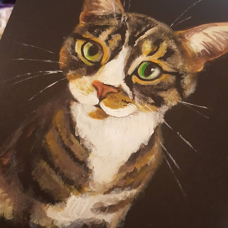 paint sketch of tabby cat