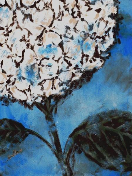 Hydrangea on blue