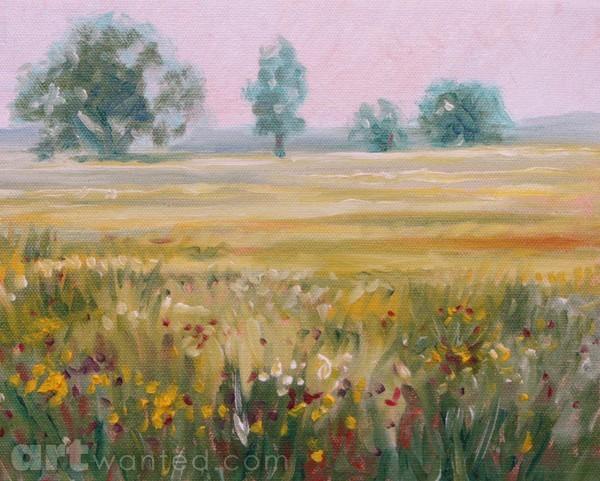 Foggy field near twilight in PA