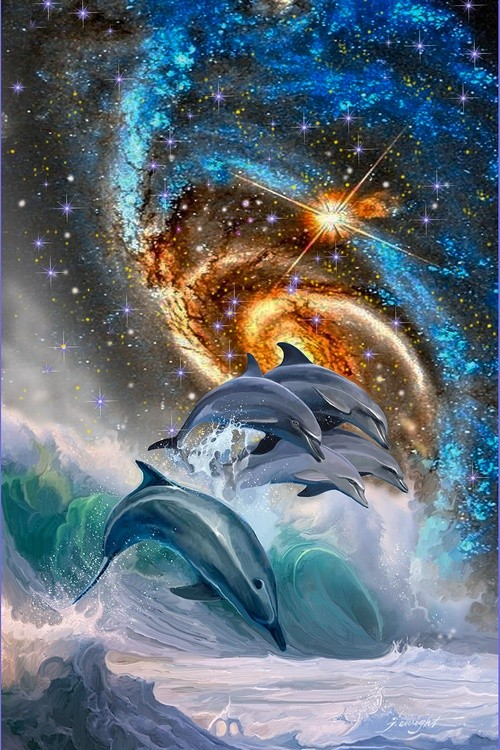 Dolphin Dance 2