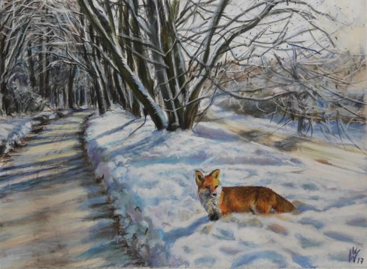 fox in snow landscape  (Fuchs im Schnee)