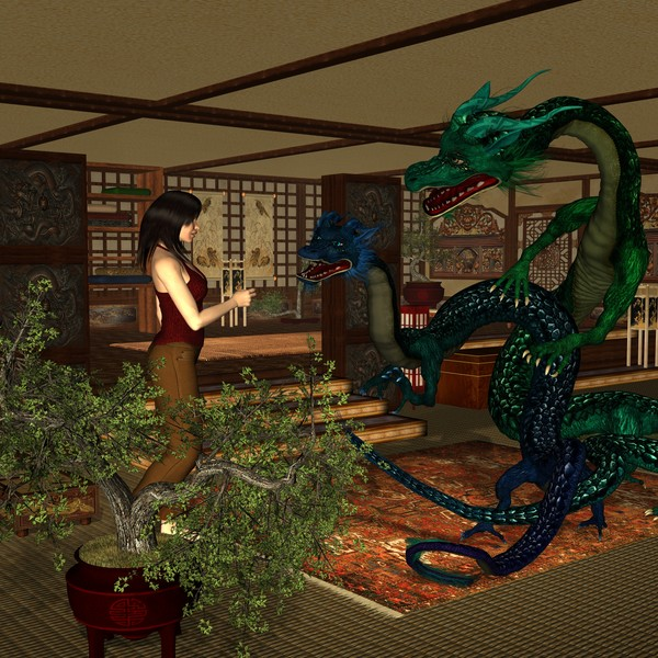 Meeting Dragons