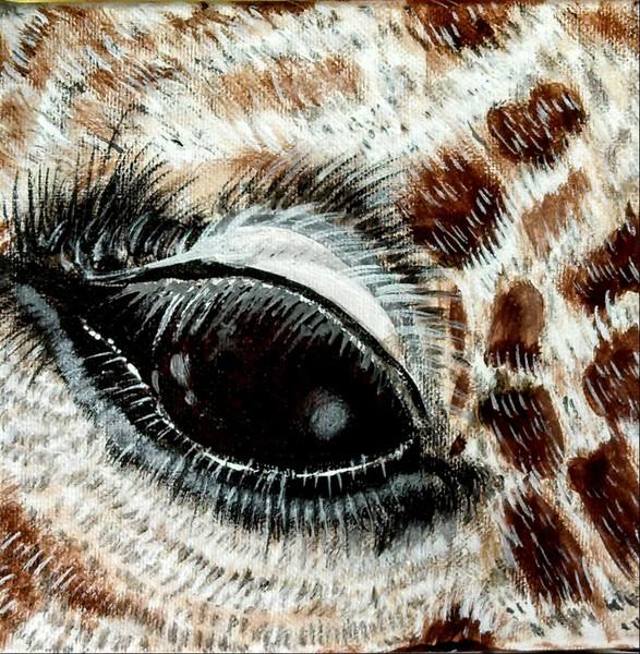 Eye Of The Giraffe 1
