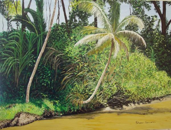 Limon Costa Rica #3