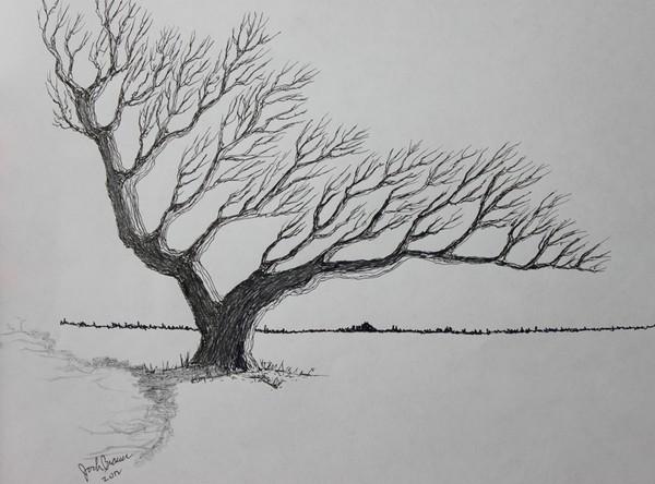 The Tree of Wayward Winds
