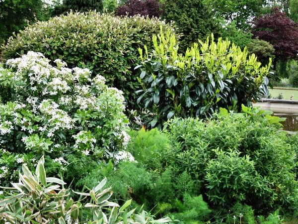 garden for the blind