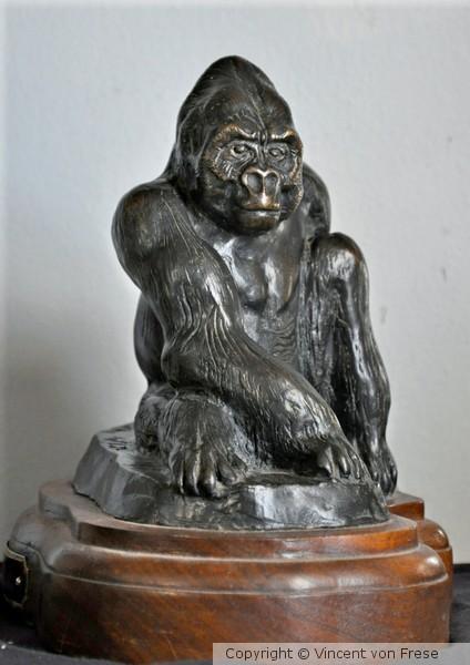 'Mountain Gorilla'