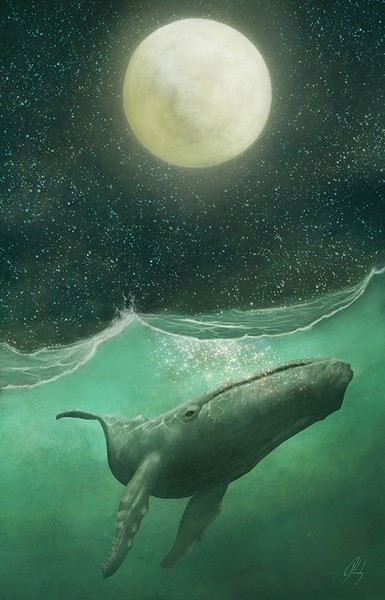 The Whale & The Moon