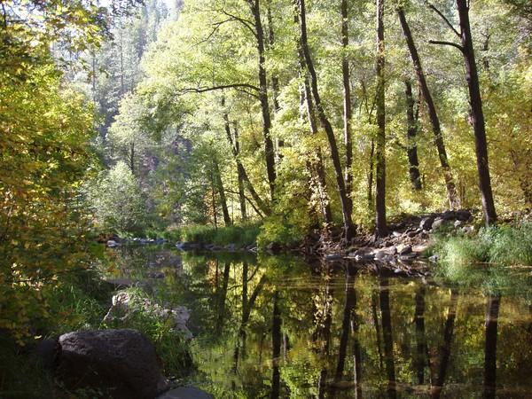 Sedona, Arizona Creek #3