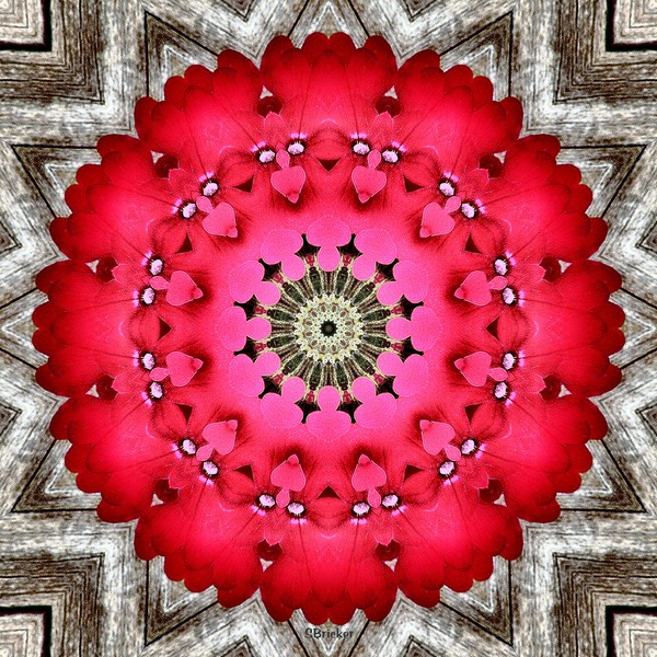 Very Verbena Mandala