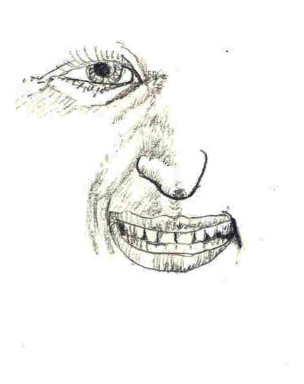 Partial Face