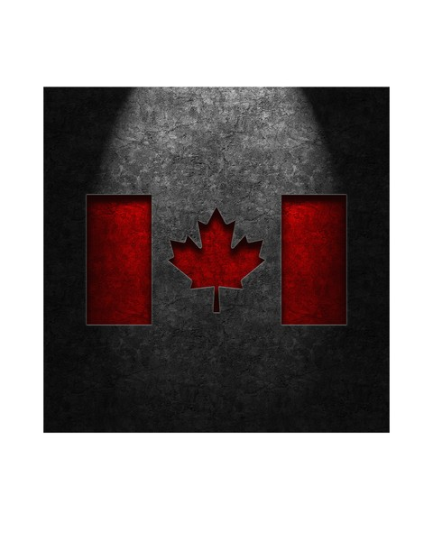 Canadian Flag Stone Texture