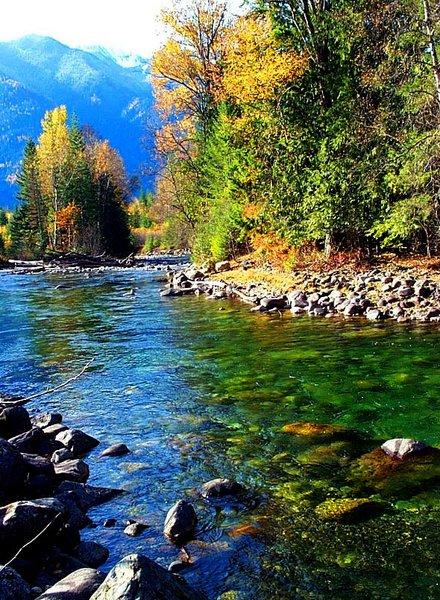 Wilson Creek, Rosebery, British Columbia