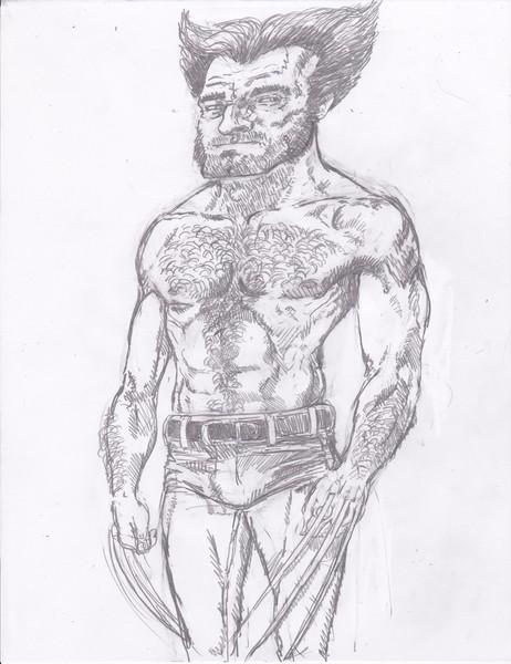 Hairy Wolverine