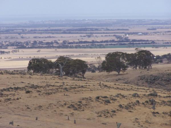 Strathalbyn, South Australia .