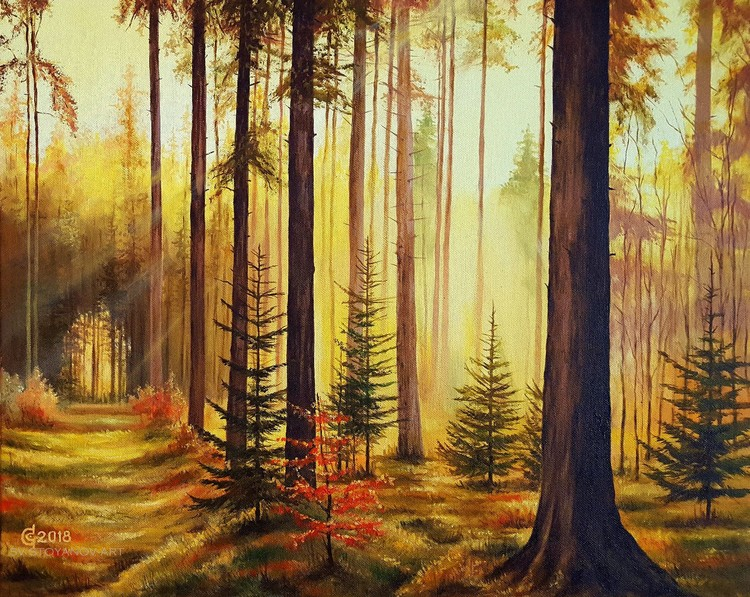 Lights and Shadows-40x50cm