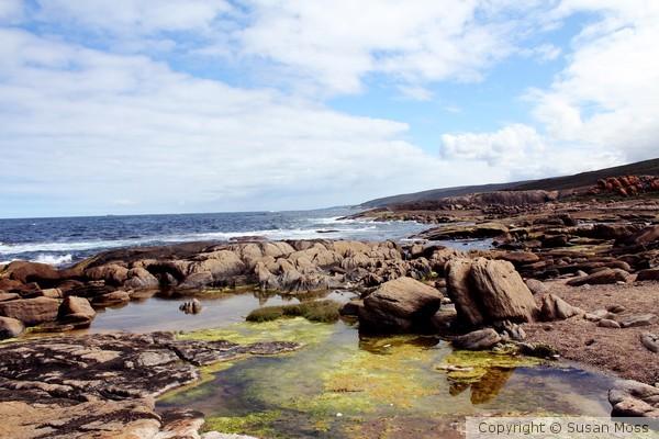 Rocky Ocean Landscape