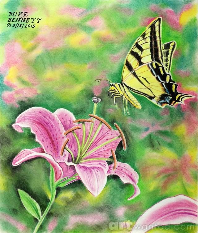 Tiger Swallowtail & Stargazer Lilly