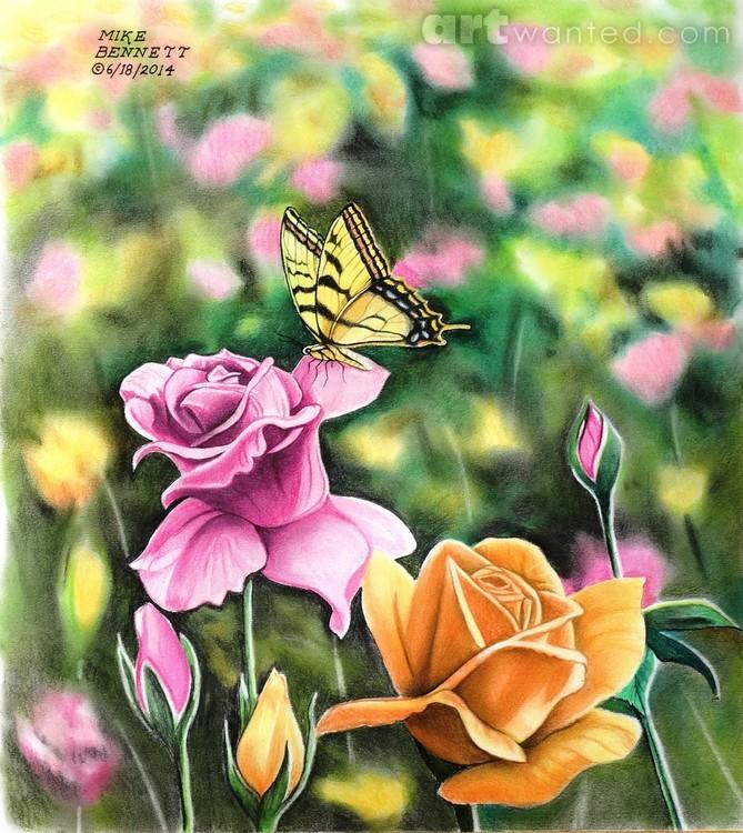 Tiger Swallowtail in Rose Garden