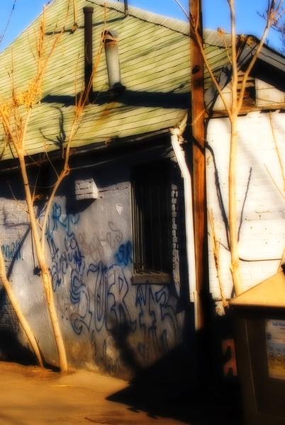 The Alley, Backyard #3
