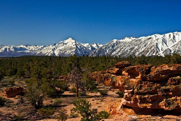 View of Sierras from Casa Diablo