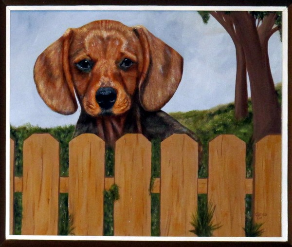 DOXIE BEHIND FENCE