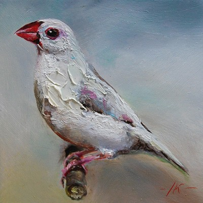oilpainting White Finch