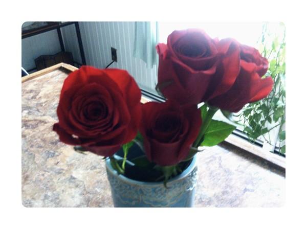 Birthday flowers from Joe