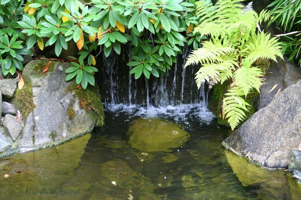 Little Waterfall in Butchart Gardens