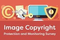 Image Copyright Member Survey