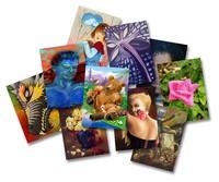Artist Card Project - Survey