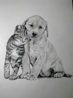 Theme: Pets