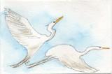 Flying Egrets Greeting Card