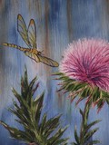 by Janet Robb Humphreys