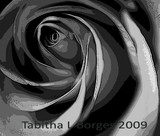 by Tabitha Borges