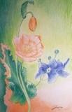 by Angella Reynolds-Screen