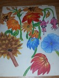 by linda frangos