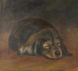 by Jarka Drechslerová