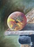by Jose Velasquez