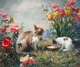 by Svitozar  Nenyuk