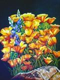 by Elaine Wilkesman