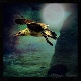 by maggie Barra