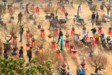 by Thanh Hoang Cong