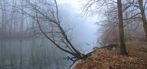 Vermillion River morning