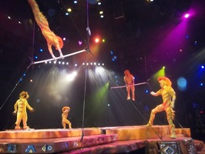 Fantastic Acrobats and Lion King show