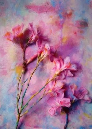 Floral 48