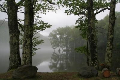 Morning Fog on River